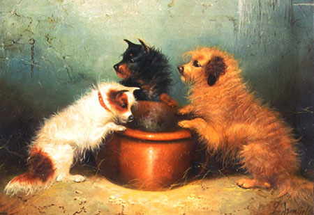 Hungry terriers by a Bowl by George Armfield (Smith)